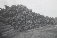 Cadillac-Lumber-Pile-Of-Logs