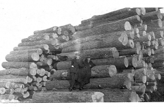 Logs Ready for Processing