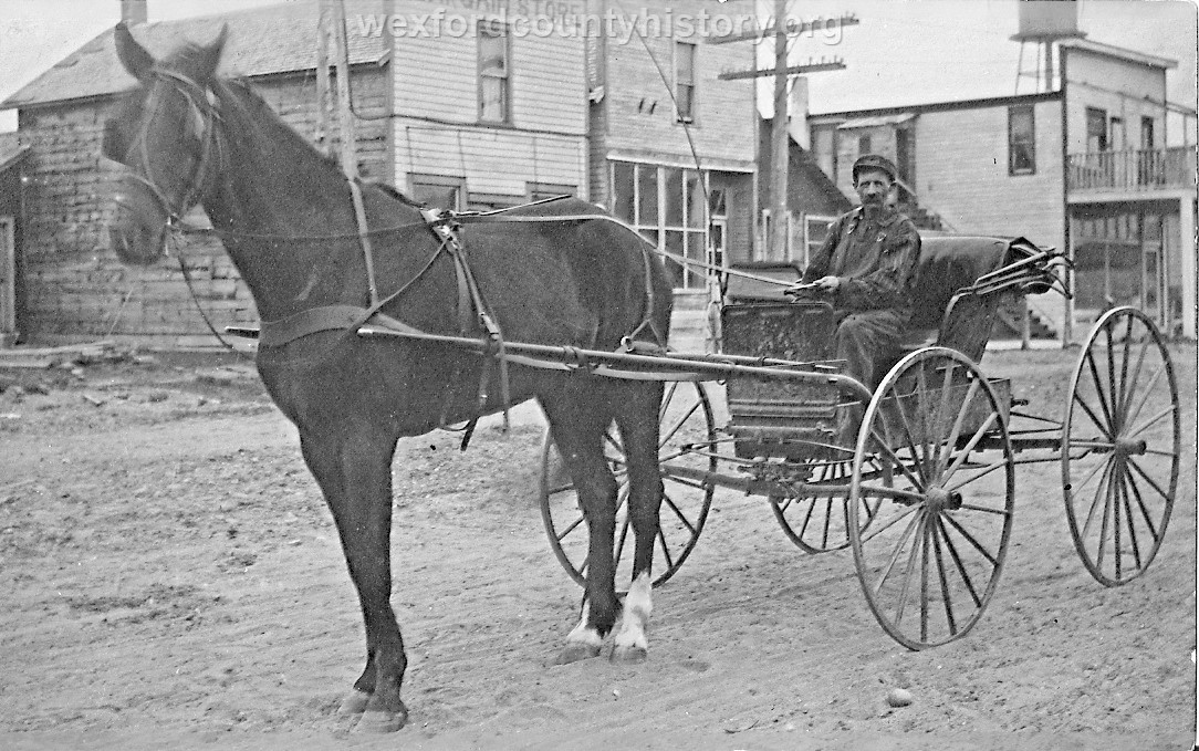 Horse And Small Carriage