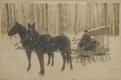 Man On Sleigh In The Woods