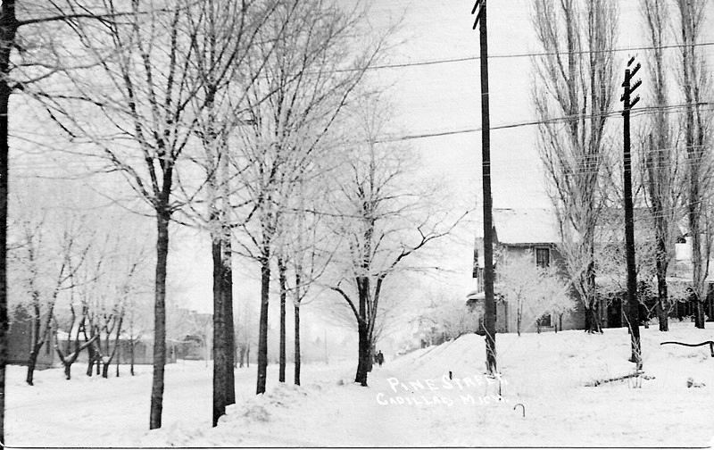Winter Day on Pine Street