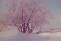 Cadillac-Weather-Winter-Scene-11
