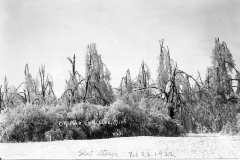 1922 Ice Storm - City Park at Lake Street