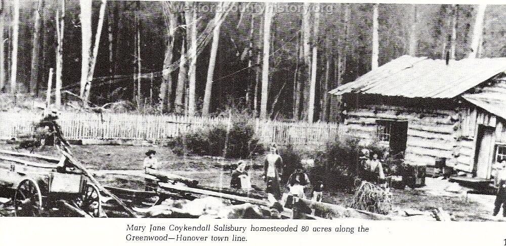 Wexford-County-Greenwood-early-settler-homestead-activity-Mary-Jane-Coykendall-Salisbury-cap