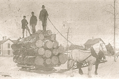 Harrietta Logging Activity