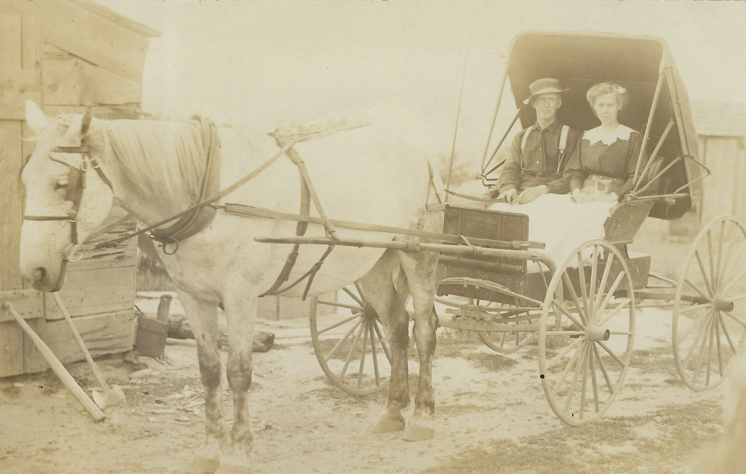 Cadillac – Transportation – Ladies In Carriage